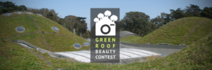 Green-Roof-Beuty-Contest-2016